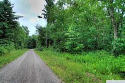 Copake Residential Lots & Land For Sale: Artford Drive