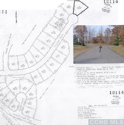 Claverack Residential Lots & Land For Sale: 28 Overlook Court