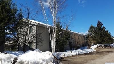 Windham Single Family Home For Sale: 58 Loo Bridge Lane #13 B