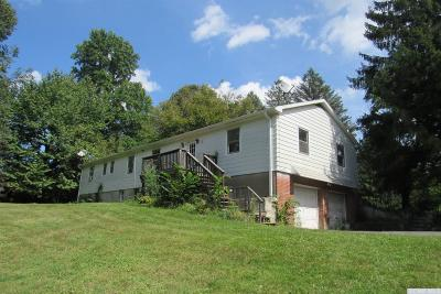 Stockport NY Single Family Home Accepted Offer: $174,900