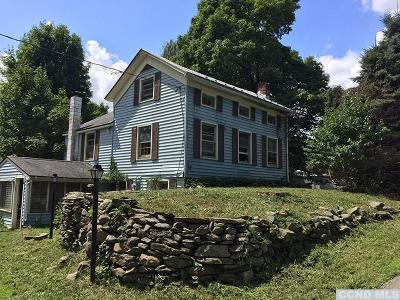 Dutchess County Single Family Home For Sale: 35 Vlei Rd.
