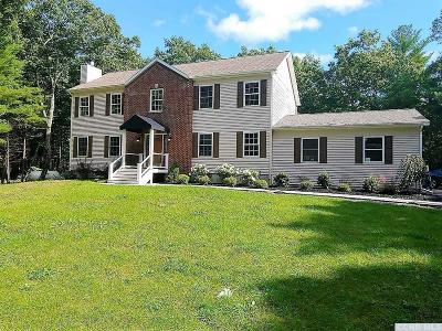 Catskill Single Family Home For Sale: 844 Pennsylvania Avenue
