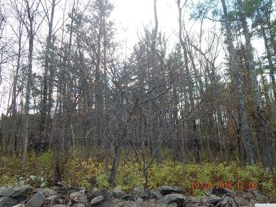 Albany County Residential Lots & Land For Sale: Pine Valley Road