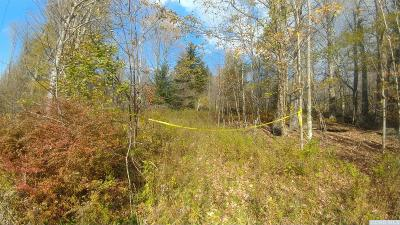 Jewett Residential Lots & Land For Sale: 1776 Route 23c