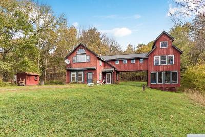 Single Family Home For Sale: 2817 Route 10