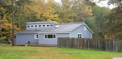 Saugerties NY Single Family Home Accpt Offer Ok 2 Sho: $249,000