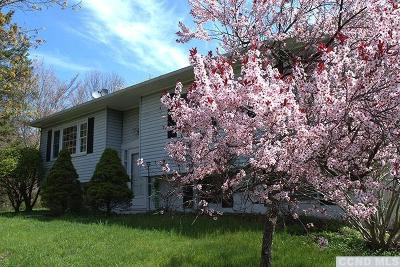 Dutchess County Single Family Home Accepted Offer: 78 Frost Rd.