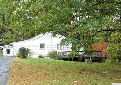 Dutchess County Single Family Home For Sale: 54 Meusel Road