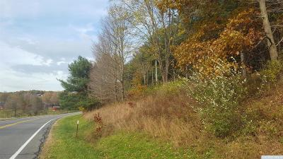 Taghkanic NY Residential Lots & Land Accepted Offer: $125,000