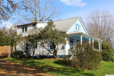 Windham Single Family Home For Sale: 251 County Route 65