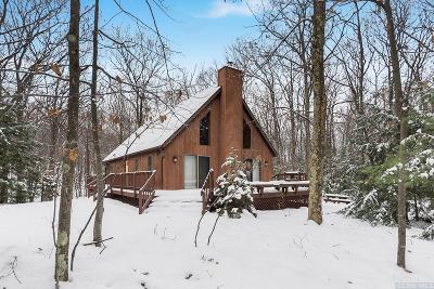 Jewett NY Single Family Home Accepted Offer: $279,000