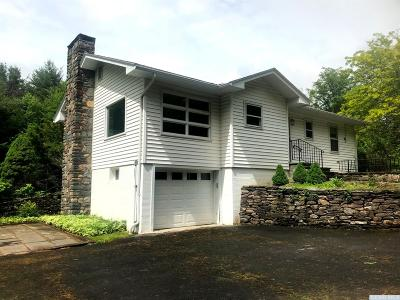 Windham NY Single Family Home For Sale: $319,000