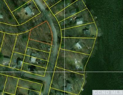 Copake Residential Lots & Land For Sale: 401 Lake View