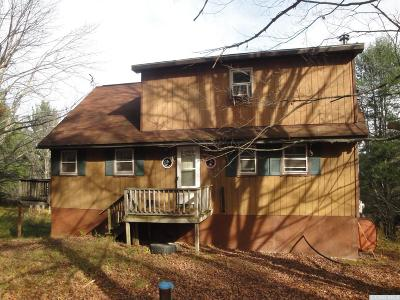 Albany County Single Family Home For Sale: 282 Cheese Hill Rd.