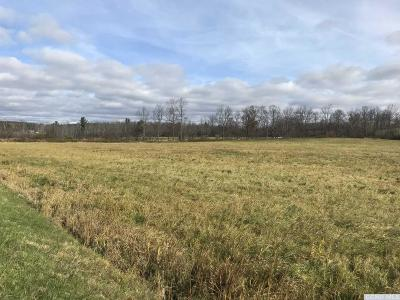 Albany County Residential Lots & Land For Sale: Route 409 #Lot B