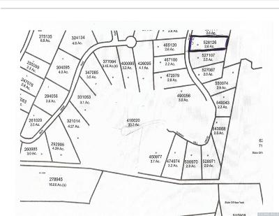 Dutchess County Residential Lots & Land For Sale: 6 Quarry Hill Drive