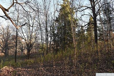 Rhinebeck NY Residential Lots & Land For Sale: $799,000