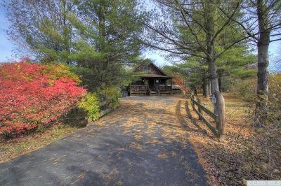 Greene County Single Family Home For Sale: 8 Gray Vapor Court