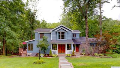 Greene County Single Family Home For Sale: 98 Highbridge Road