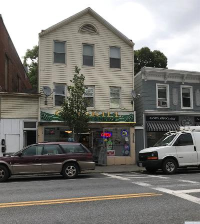 Greene County Multi Family Home For Sale: 342 Main Street