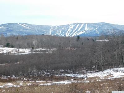 Windham Residential Lots & Land For Sale: Mitchell Hollow Road