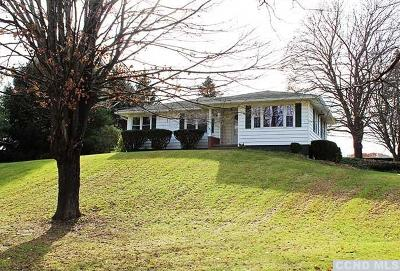 Dutchess County Single Family Home For Sale: 268 Route 199