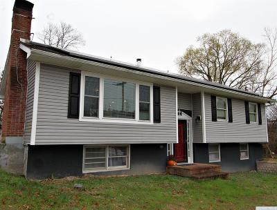 Single Family Home For Sale: 5290 State Route 9g