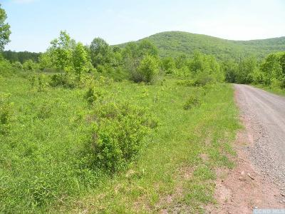 Windham Residential Lots & Land For Sale: County Route 21