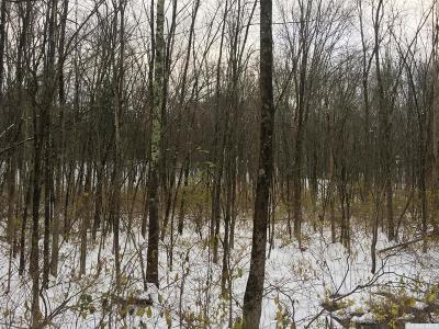 Dutchess County Residential Lots & Land For Sale: E Fallkill Road