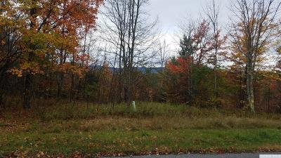 Jewett NY Residential Lots & Land For Sale: $59,000
