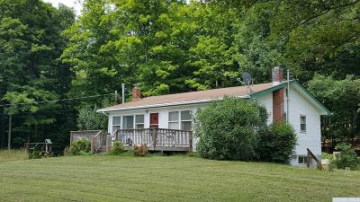 Prattsville Single Family Home For Sale: 675 Dent Road
