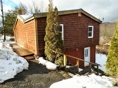 Tannersville NY Single Family Home For Sale: $129,000