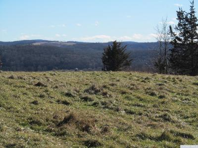 Ancram NY Residential Lots & Land For Sale: $99,500