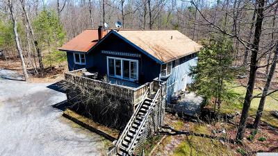 Freehold NY Single Family Home For Sale: $269,900