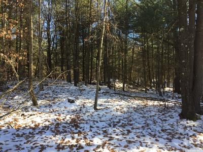 Gallatin NY Residential Lots & Land For Sale: $95,000