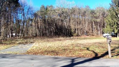 Cairo NY Residential Lots & Land For Sale: $35,000