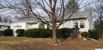 Columbia County Single Family Home For Sale: 241 Route 23