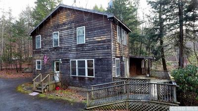 Cornwallville NY Single Family Home For Sale: $149,900