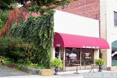 Catskill NY Commercial For Sale: $315,000