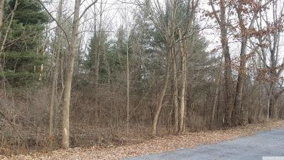 Athens NY Residential Lots & Land For Sale: $9,000