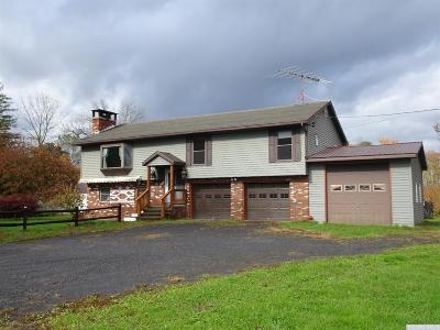 Catskill NY Single Family Home For Sale: $325,000