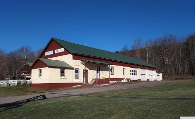 Roxbury NY Commercial For Sale: $159,000