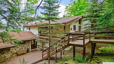 Windham Single Family Home For Sale: 4 Loops End