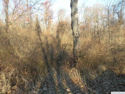 Dutchess County Residential Lots & Land For Sale: Hammond Hill Road