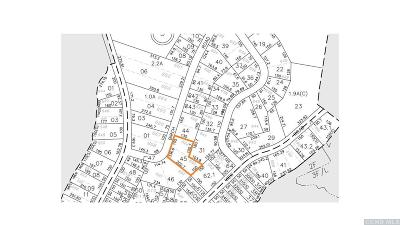 Copake NY Residential Lots & Land For Sale: $25,000