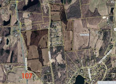 Stanford NY Residential Lots & Land For Sale: $1,200,000