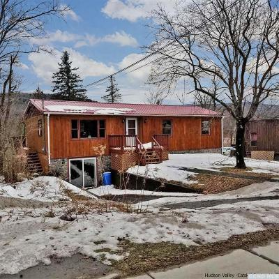 Tannersville NY Single Family Home For Sale: $215,000