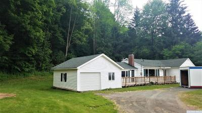 Ashland Single Family Home For Sale: 11366 Route 23