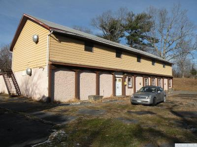 Purling NY Commercial For Sale: $135,000