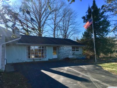 Greenville NY Single Family Home For Sale: $150,000